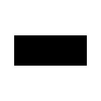 Fortezza logo