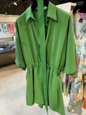 V28 Fern green